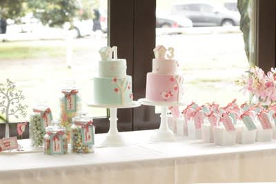 15 Party Ideas for BoyGirl Twins birthdays Tip Junkie