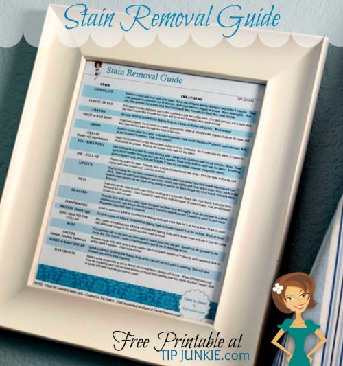 Print this Darling Stain Removal Guide for your Laundry room! {it's free!}