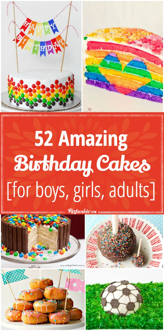 52 Amazing Birthday Cake Recipes for boys girls adults Tip Junkie