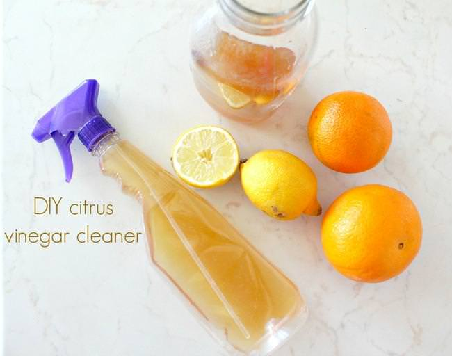 DIY-citrus-vinegar-cleaner-thumb-jpg