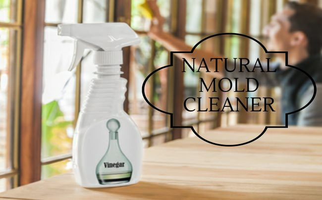 A self-proclaimed cleaning maniac share her favorite Homemade Natural Mold Cleaner.  Thanks @katherineadrol You ROCK!