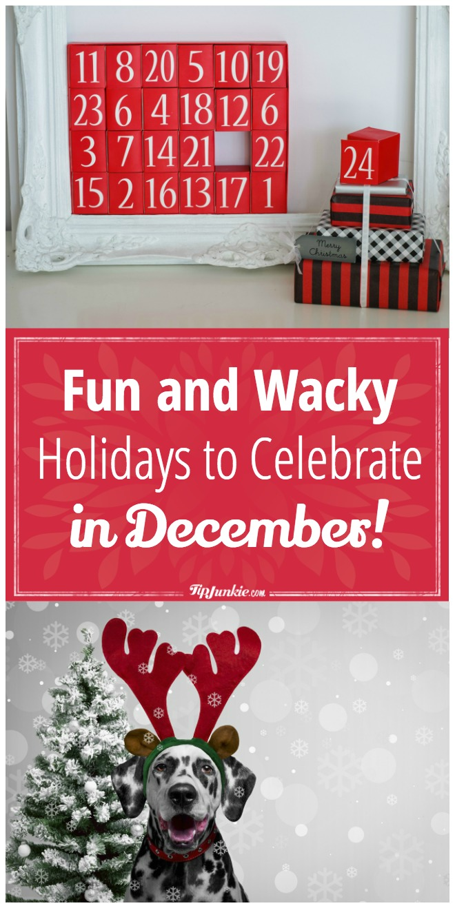 Fun-and-Wacky-Holidays-to-Celebrate-December