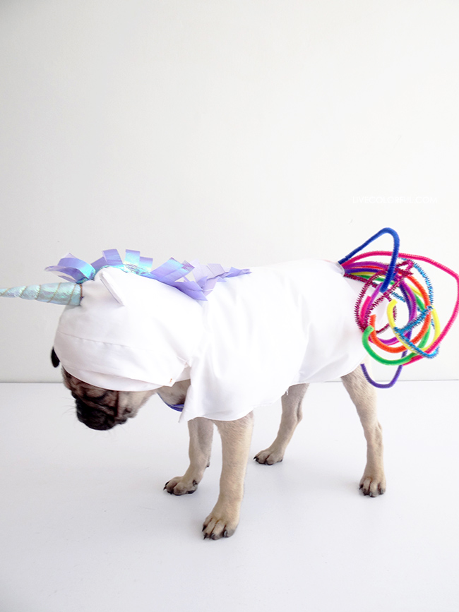 Dog Unicorn Costume