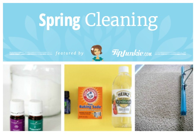12 diy carpet cleaning tips tricks tip junkie this homemade carpet cleaning recipe by chase and more works really well its easy to make works quickly and does not leave a lingering odor solutioingenieria Image collections