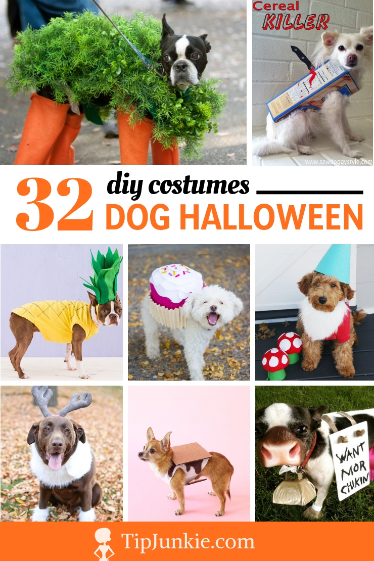 32 Adorable Dog Costumes to DIY