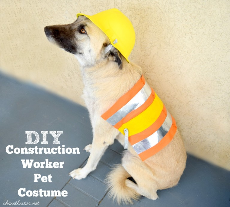 DIY-Construction-Worker-Pet-Costume-michaelsmakers1