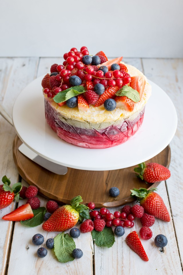 Fresh Fruit Yogurt Frozen Cake