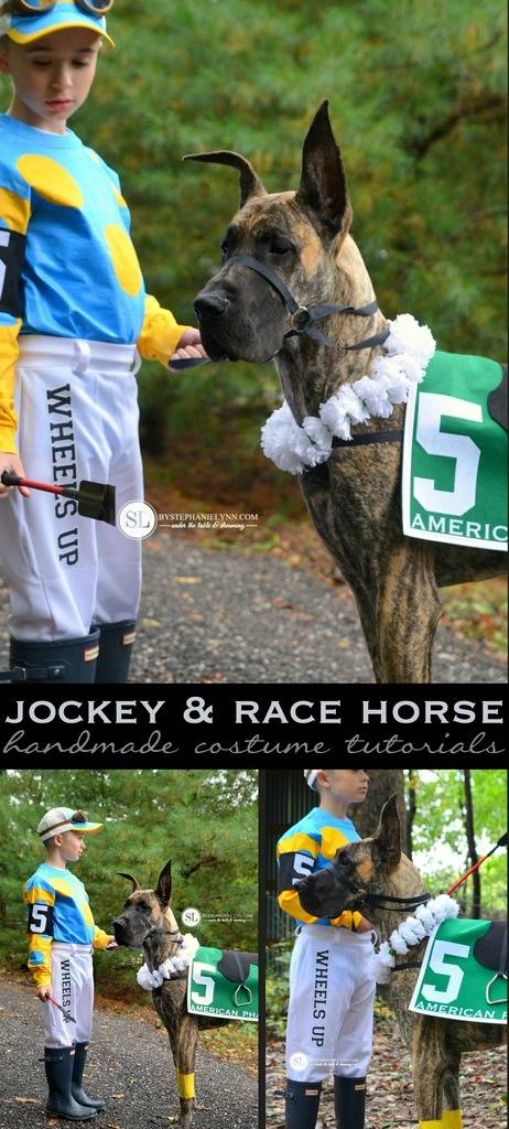 Jockey and Race Horse Dog Costume