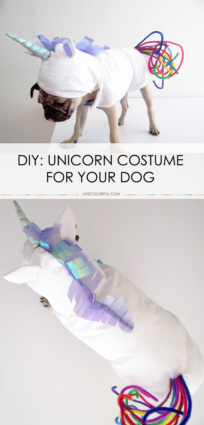 Unicorn DIY Dog Costume