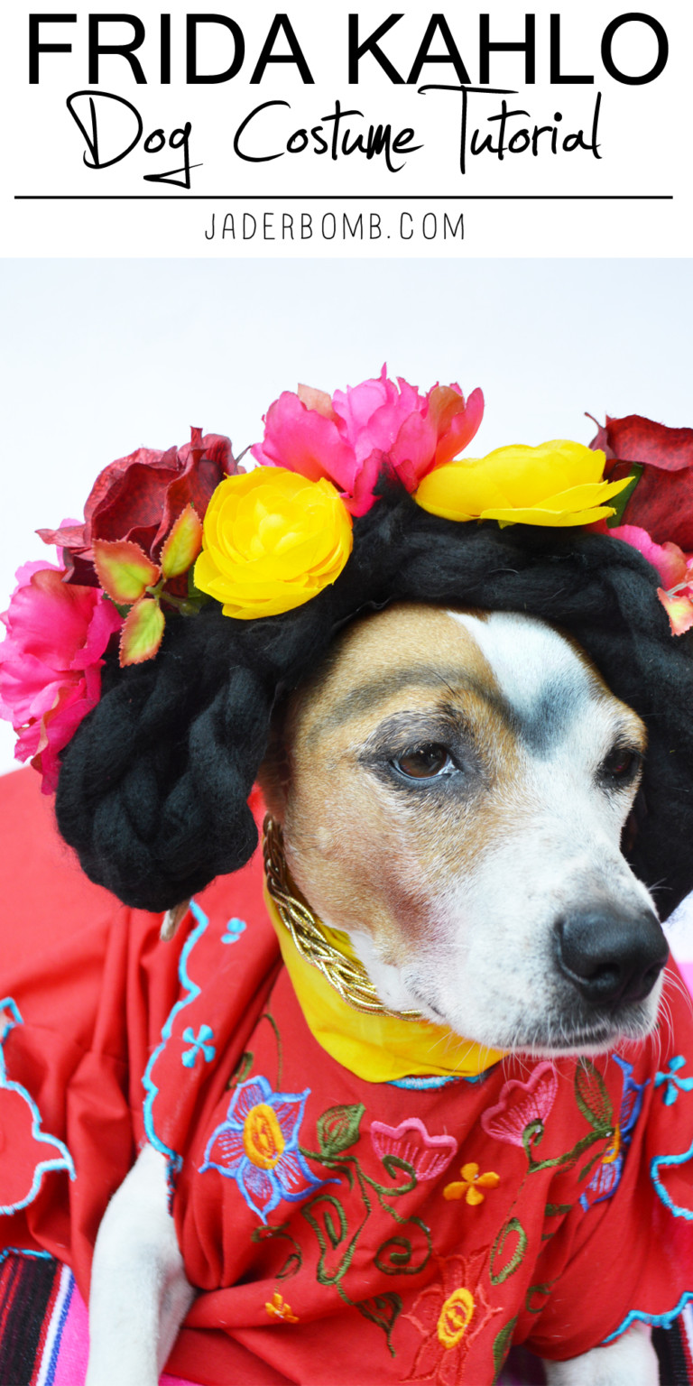 How to Make a Frida Kahlo Dog Costume