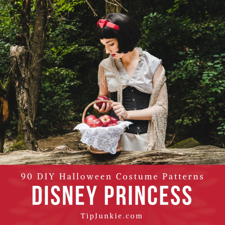 DIY Disney Princess Costumes to Make