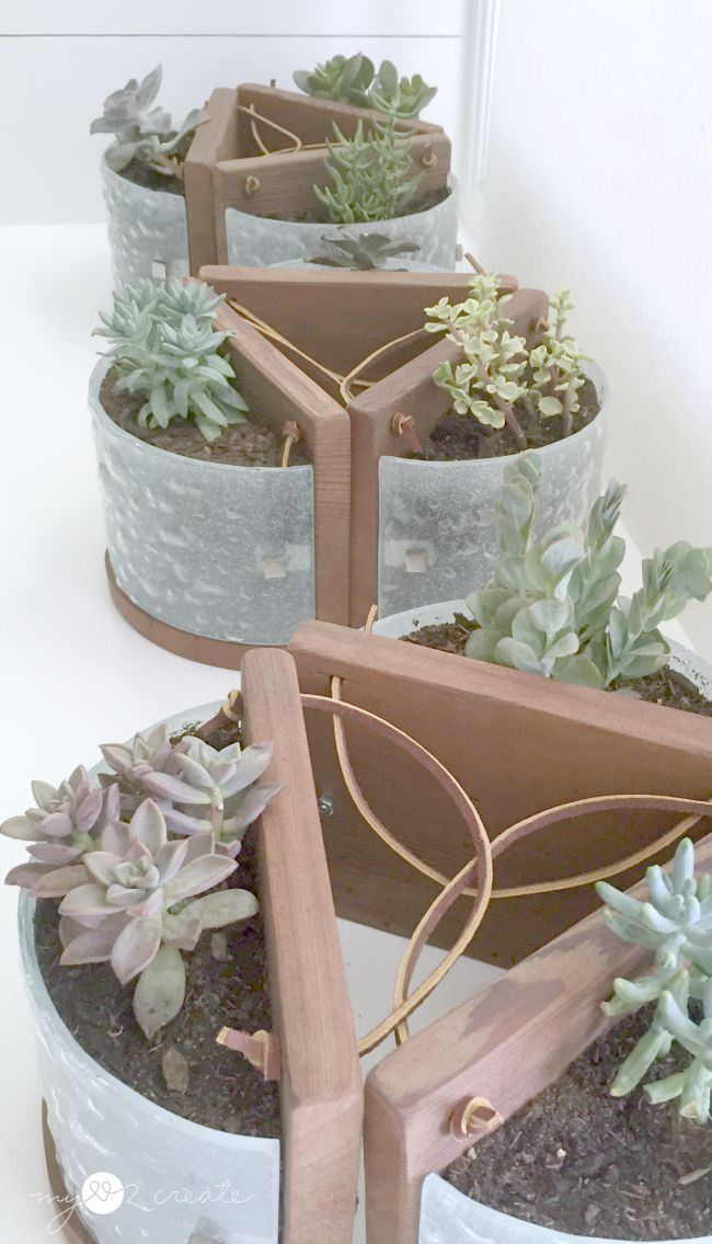 Succulent Planters from Light Fixtures