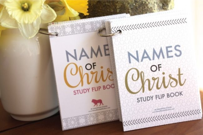 Names of Christ Study Flip Books