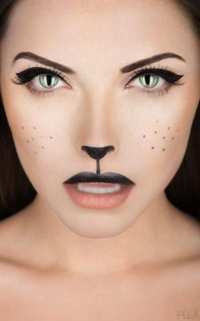 15 Easy Animal Halloween Makeup Tutorials | Tip Junkie