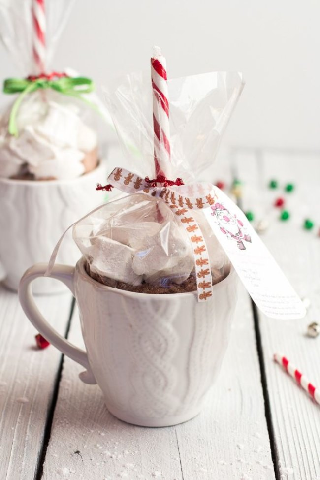 Double Chocolate Vanilla Bean Hot Cocoa Mugs & Marshmallows