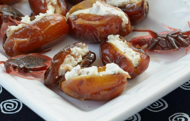 recipe-for-cheese-stuffed-dates-that-look-like-roaches-fea-jpg