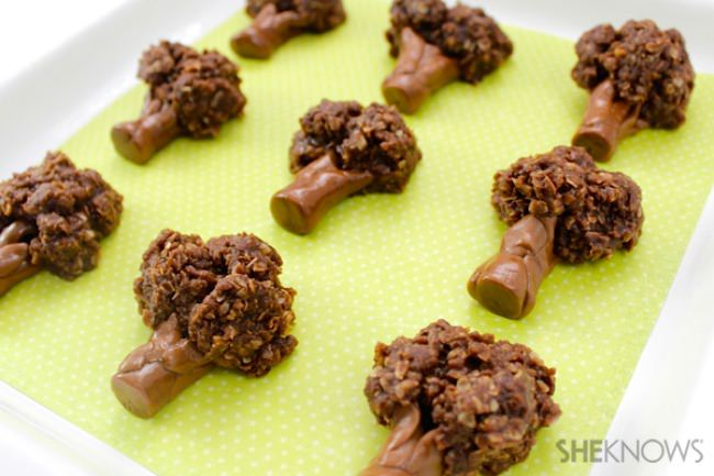 Chocolate Broccoli Cookies