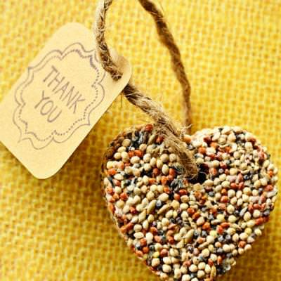 DIY Bird Seed Favors {Party Favors}