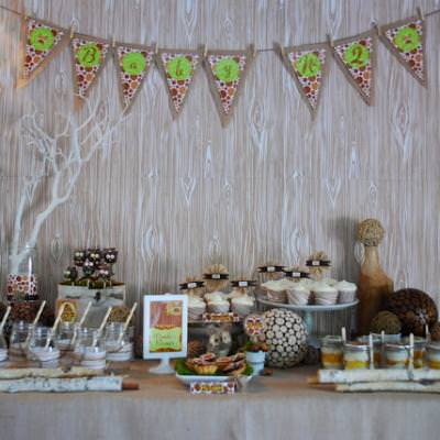 Rustic Owl Baby Shower