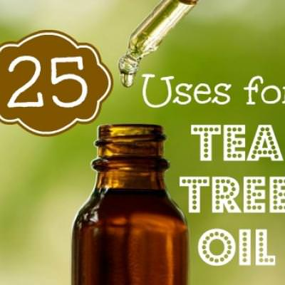 Twenty-Five Uses for Tree Oil {Healing Therapies}