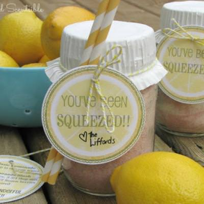 You've Been Squeezed {summer gift idea}